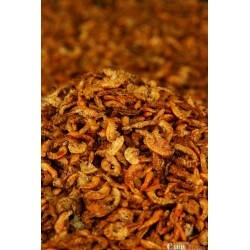 Gammarus Shrimps 400 ml
