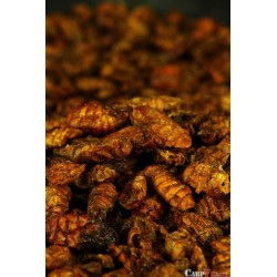 Black Fly Larvae 400 ml
